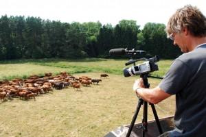 Roland Eckelt filmt aus der Beobachterposition